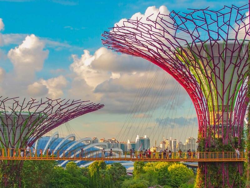 Proco Singapore